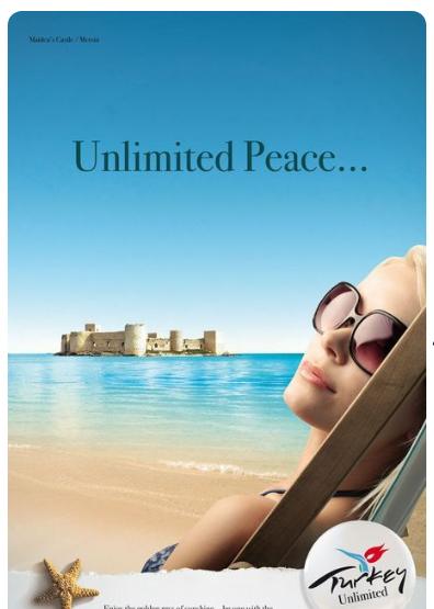 2020-01-09 21_13_40-63 Best Travel ads images _ Travel ads, Hotel ads, Ads
